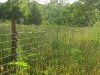 PasturePro Dropper Fence