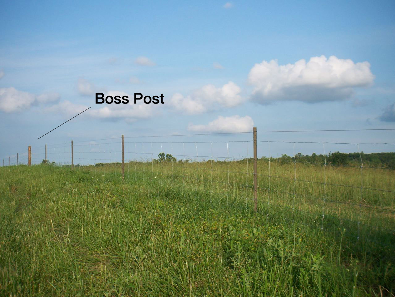 Using a Line Boss for High Tensile Fencing | PasturePro