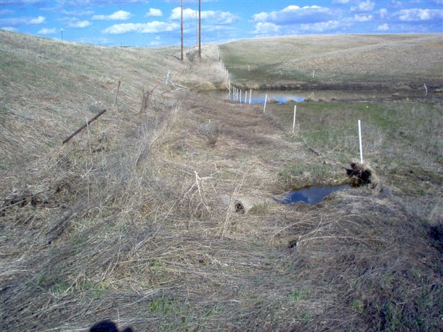 Image 9 -  A side by side comparison of the old barbed wire fence and the new fence.