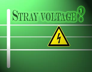stray voltage graphic