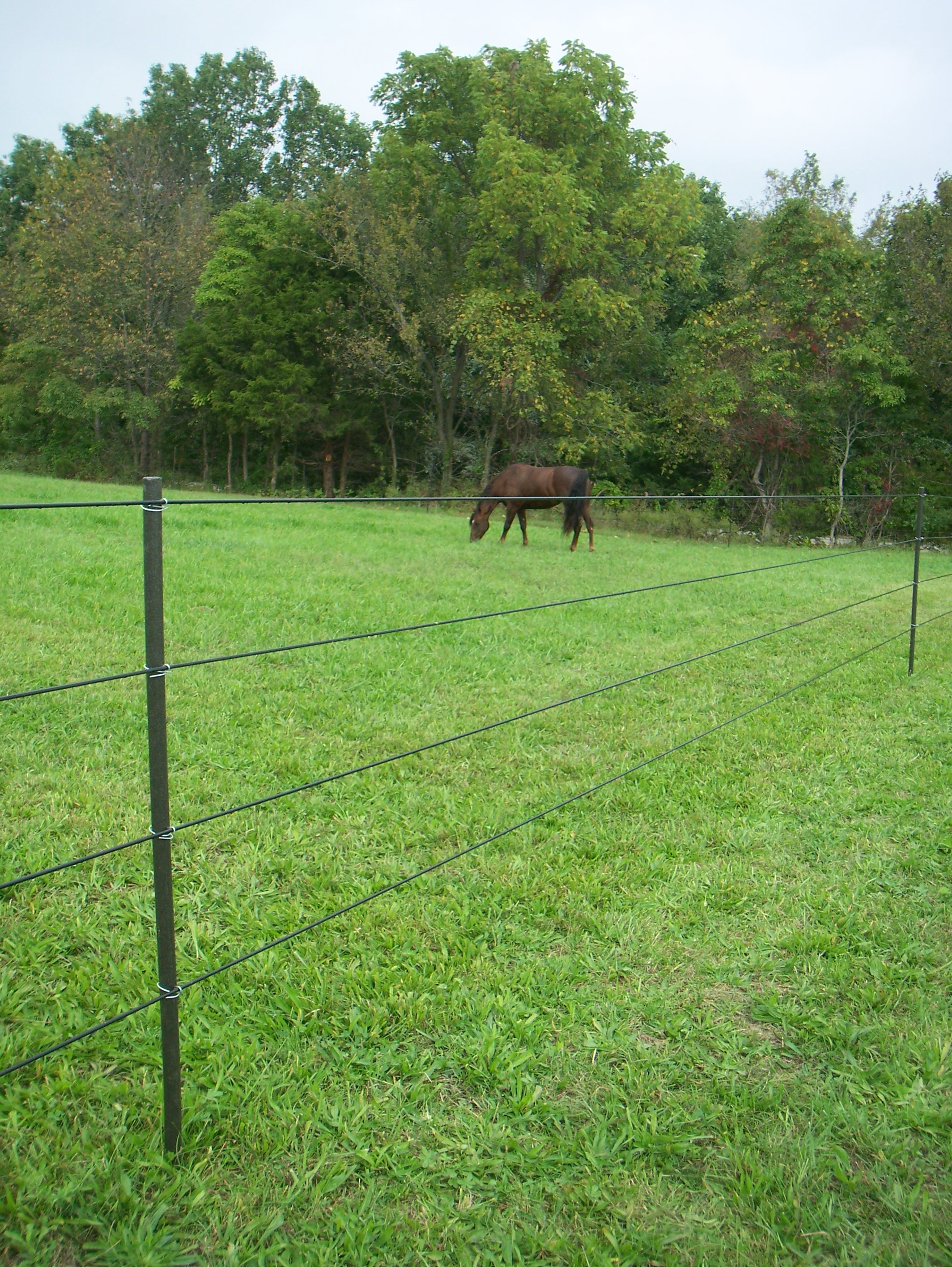 Pasturepro All Things Fencing